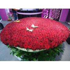 Букет из 700 роз