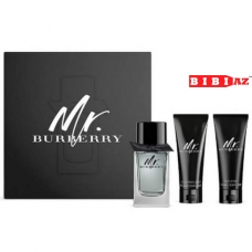 Mr. Burberry Burberry edt set
